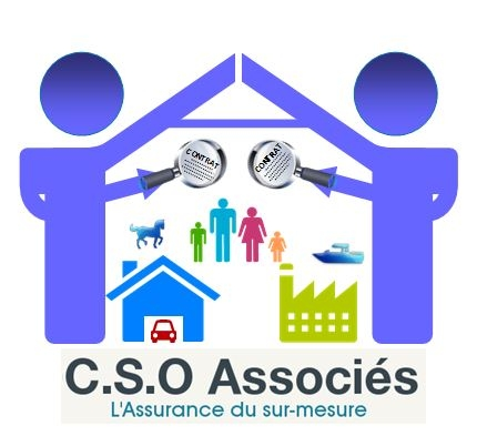 CSO & ASSOCIES